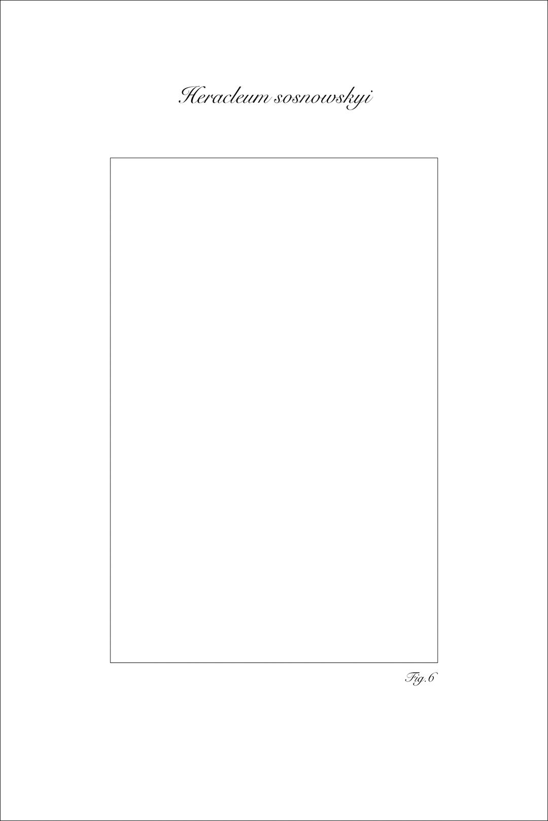 Figura Abest